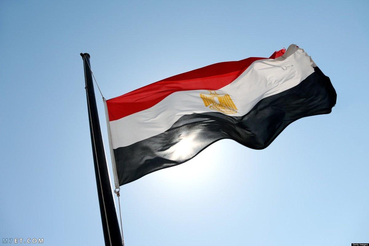 السفارة المصرية بالرياض