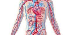 الإصابة التي تجعل الأوعية الدموية تنفجر تحت الجلد المتضرر تسمى