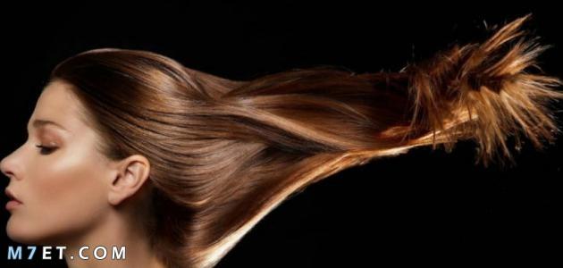 كيف اجعل شعري اقوى